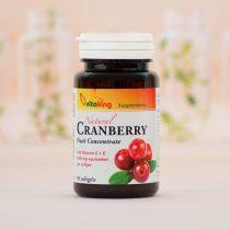 Vitaking Tőzegáfonya C&E vitaminnal 90