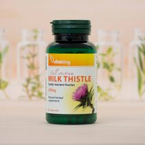 Vitaking Máriatövis Milk Thistle 500 mg 90 caps